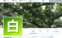 twitter「siraoka.jp」
